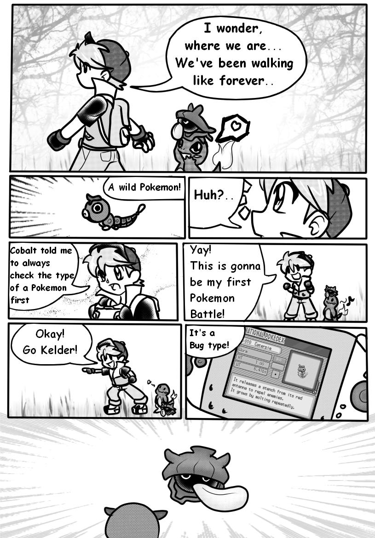 type vol pokémon